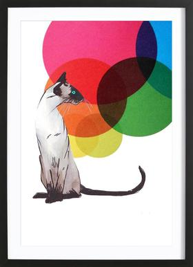 Siamese Cat with colorful balls - Poster in Wooden Frame