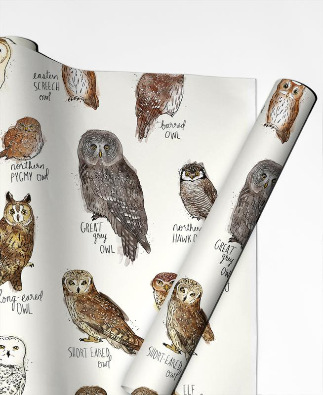 Owls, Nursery & Art for Kids, Owls Gift Wrap