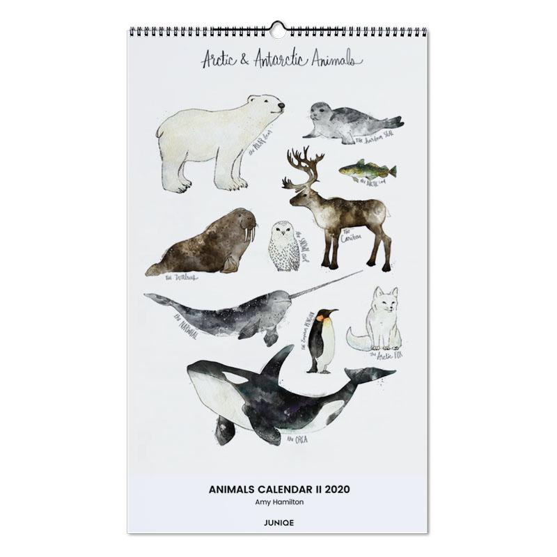 Animals Calendar II 2020 - Amy Hamilton -Wandkalender