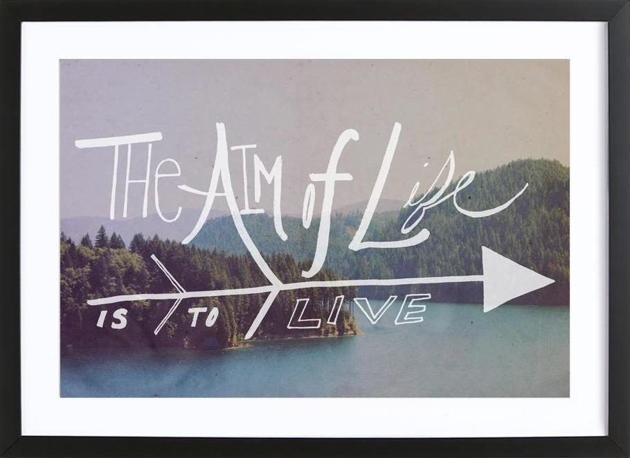 The Aim of Life ingelijste print