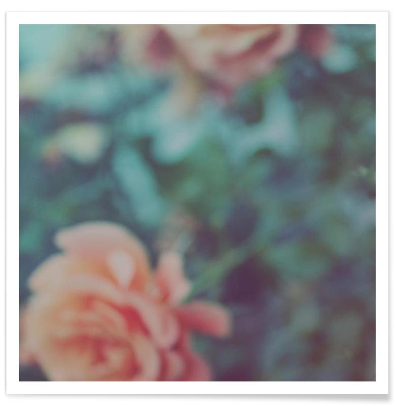 Roses, Faded Floral affiche