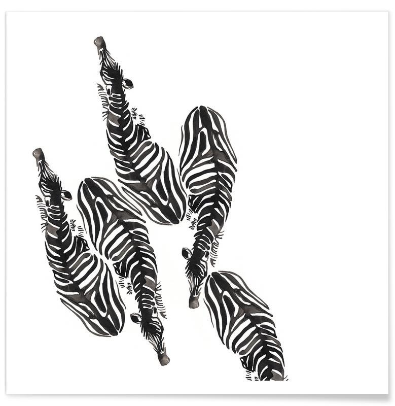Sort & hvidt, Zebraer, Zebra Plakat