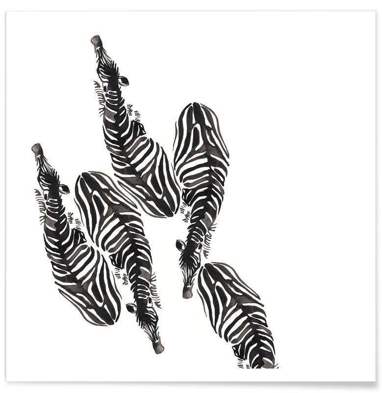Zwart en wit, Zebra's, Zebra poster