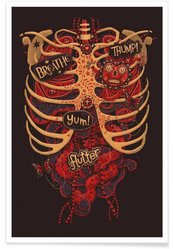 Anatomical Study affiche