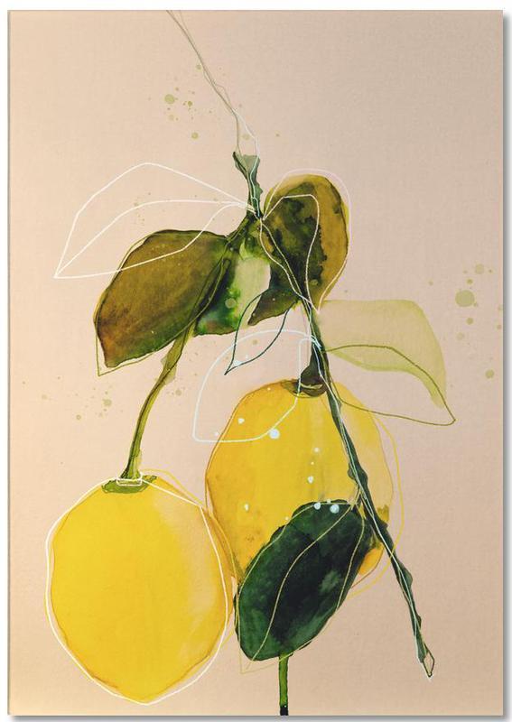 Leaves & Plants, Lemons, Lemonstudy 02 Notepad