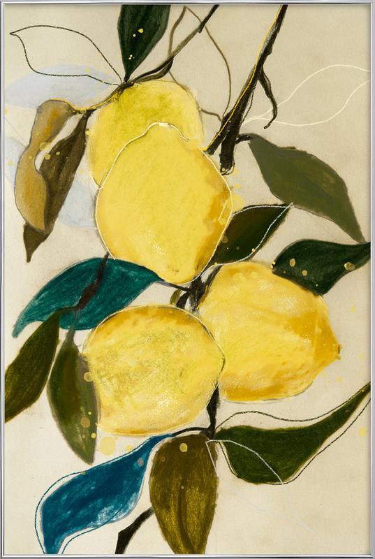 Lemonstudy 1 -Poster im Alurahmen