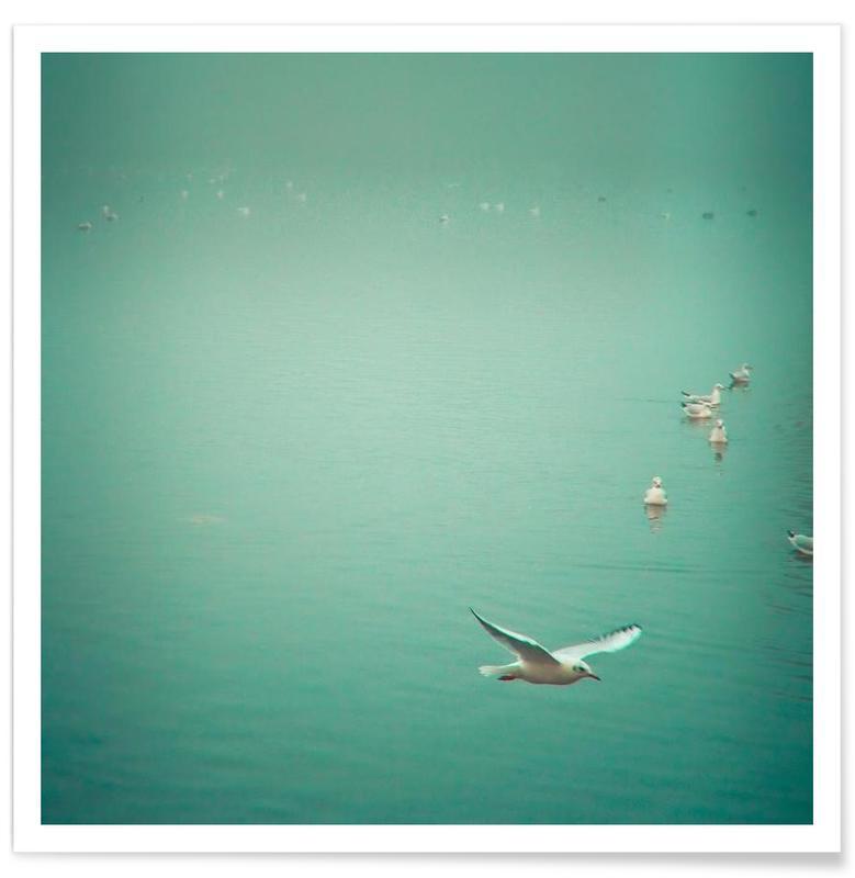 Mouettes, Océans, mers & lacs, Soul bird affiche