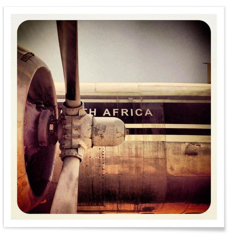 Avions, Birdie  affiche