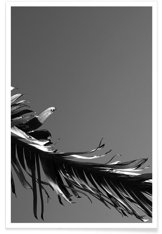 Noir & blanc, Venise, Palmiers, LA State of Mind (Venice Beach) affiche