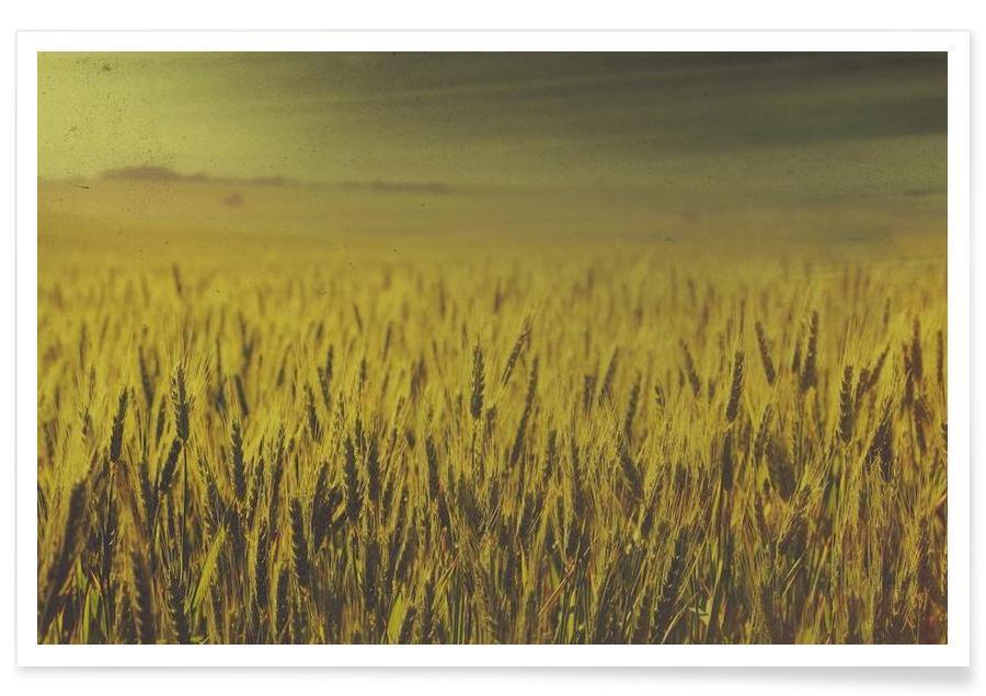 Feuilles & Plantes, Wheat in Concordia affiche