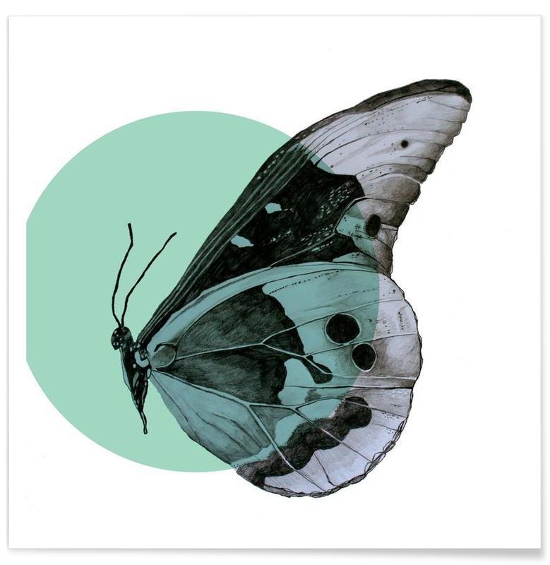 Papillons, Mite - Dessin affiche