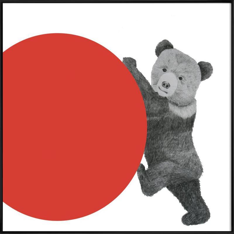 Bear -Bild mit Kunststoffrahmen