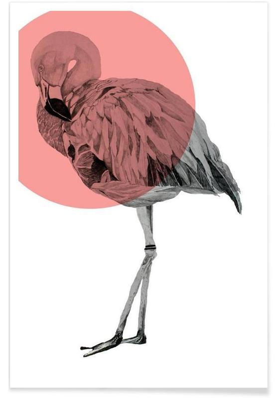 Flamingo - tekening poster