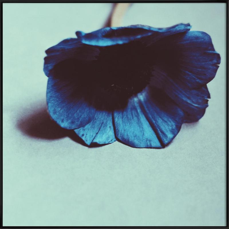 , Blue -Bild mit Kunststoffrahmen