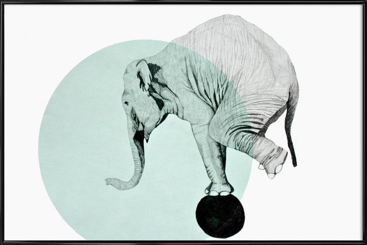 Elephant Framed Poster