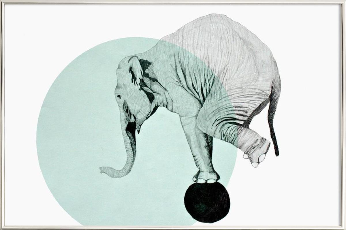 Elephant Poster in Aluminium Frame