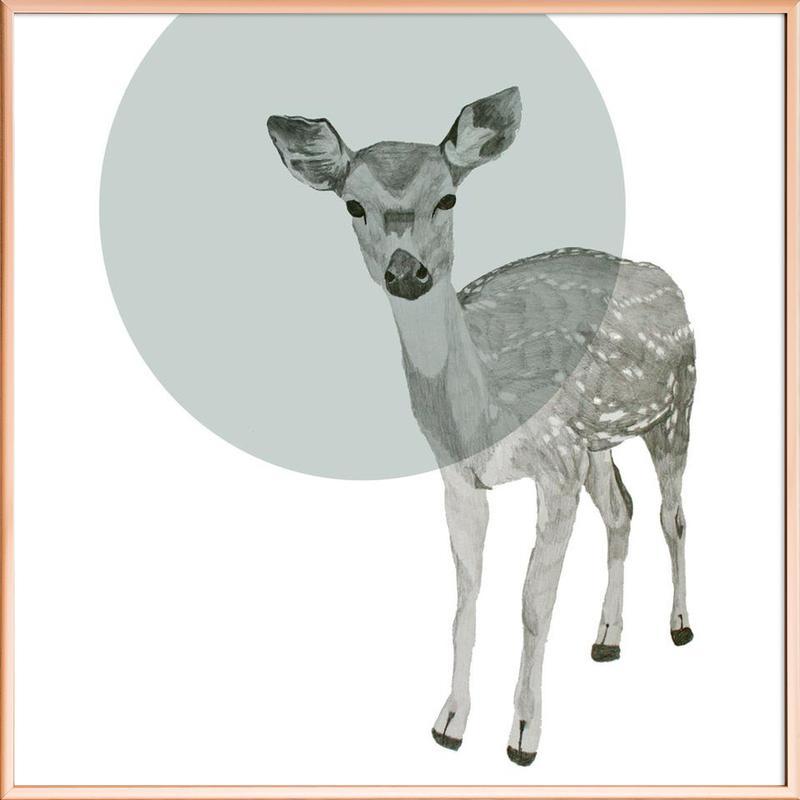 Deer -Poster im Alurahmen