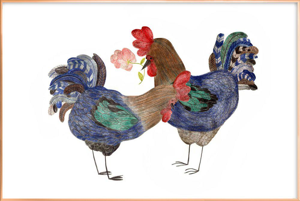 Roosters in Love poster in aluminium lijst