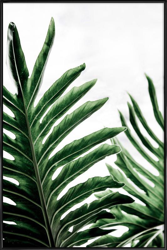Leaves 1 Framed Poster