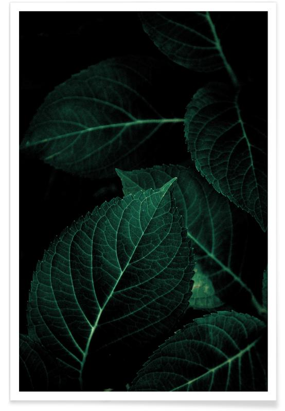 Blätter & Pflanzen, Dark Leaves 1 -Poster