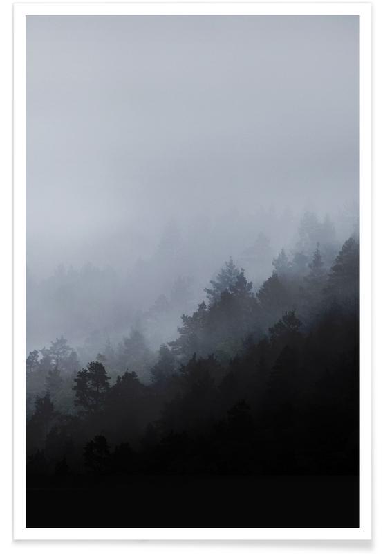 Noir & blanc, Forêts, Misty Mornings affiche
