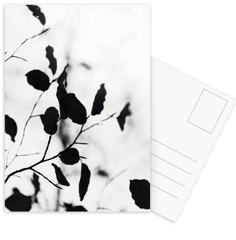Silhouettes 1 Postcard Set