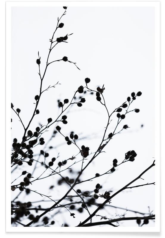 Winter Silhouettes 1 affiche