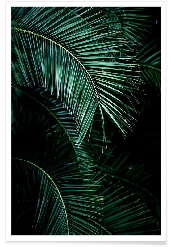 Palm Leaves 9 -Poster