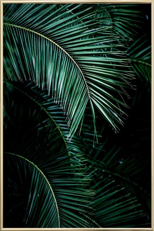 Palm Leaves 9 poster in aluminium lijst