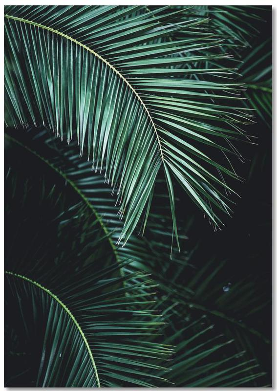 Palm Leaves 9 Notepad