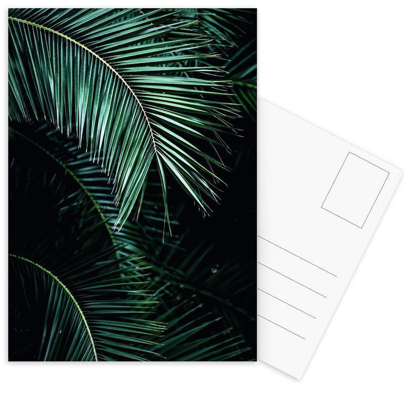 Palm Leaves 9 Postcard Set
