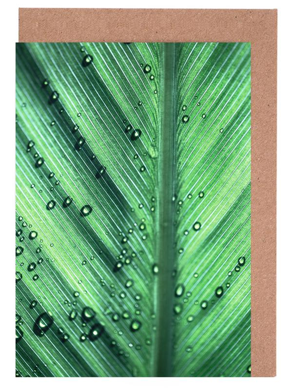 Palm Leaves 11 Greeting Card Set