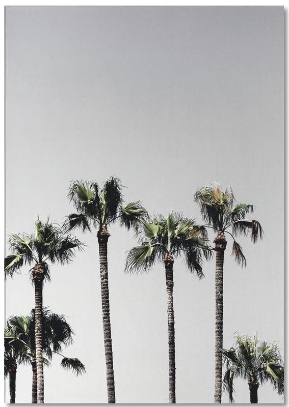 Palm Trees 5 Notepad