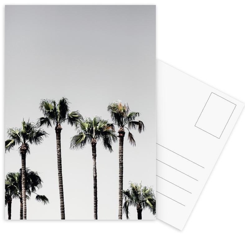 Palm Trees 5 Postcard Set