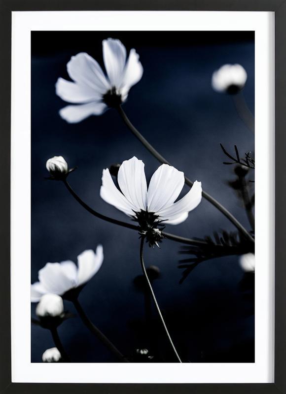 Wild Flowers 1 Framed Print