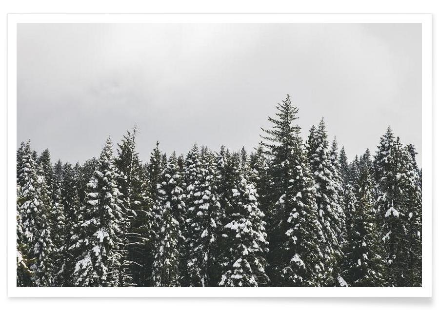 Forêts, Arbres, Snow Trees affiche