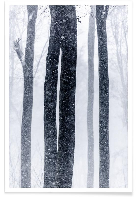 Snow Trees 2 Poster