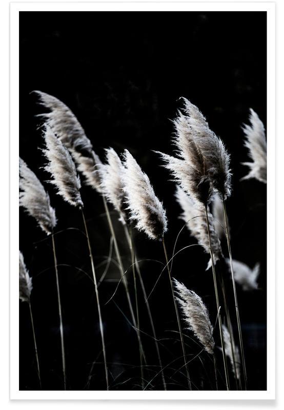 Grass 4 poster