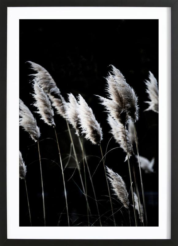 Grass 4 affiche sous cadre en bois