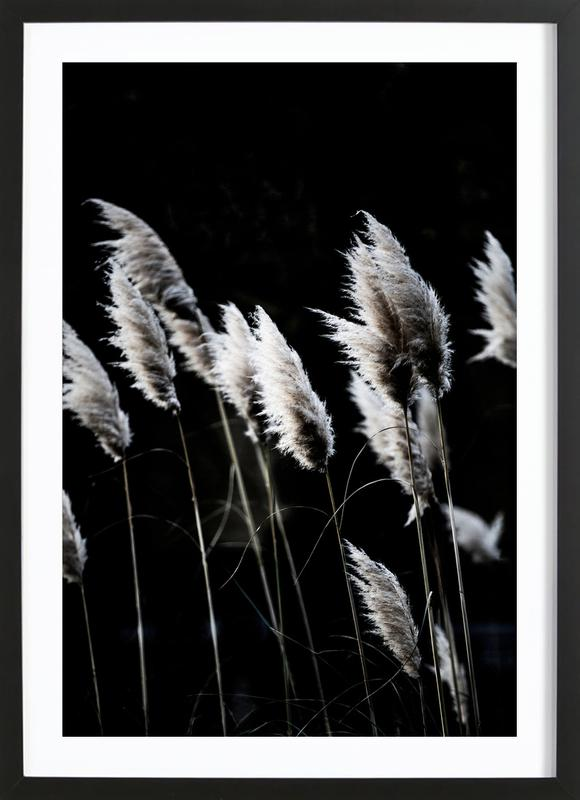 Grass 4 -Bild mit Holzrahmen