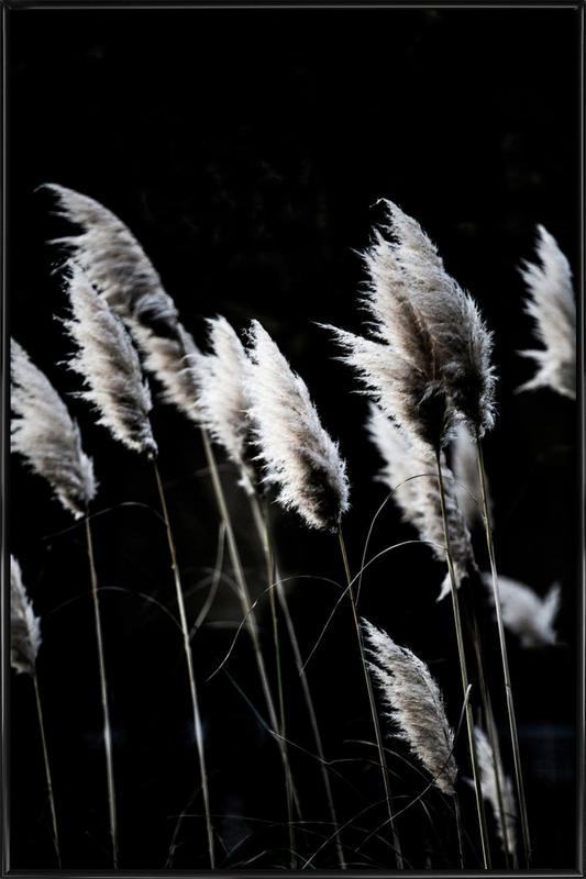 Grass 4 ingelijste poster