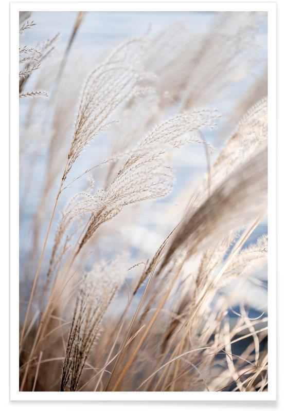 Grass 5 Poster