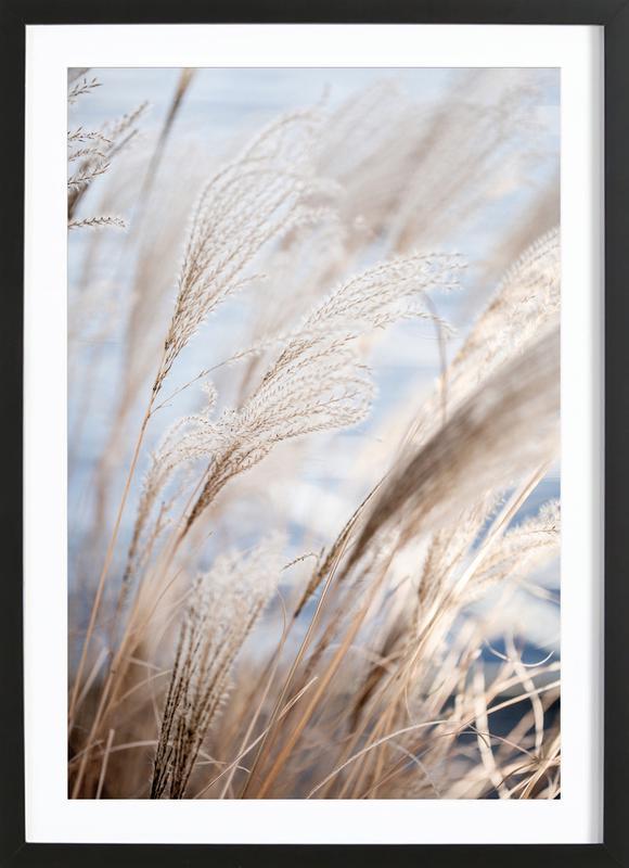 Grass 5 affiche sous cadre en bois
