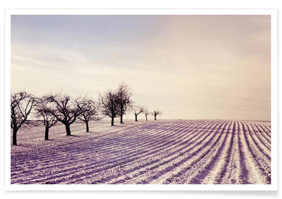 , Winter Field affiche