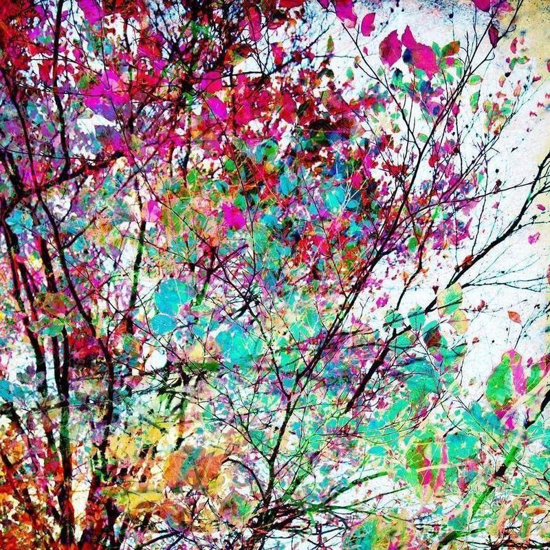 Autumn 8 -Leinwandbild