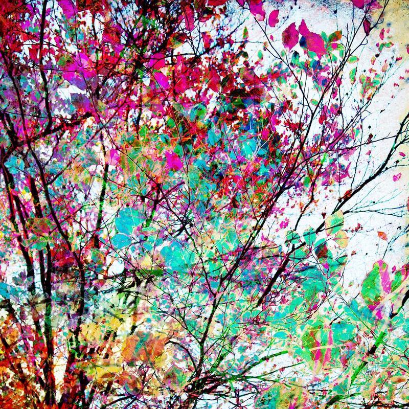 Autumn 8 acrylglas print