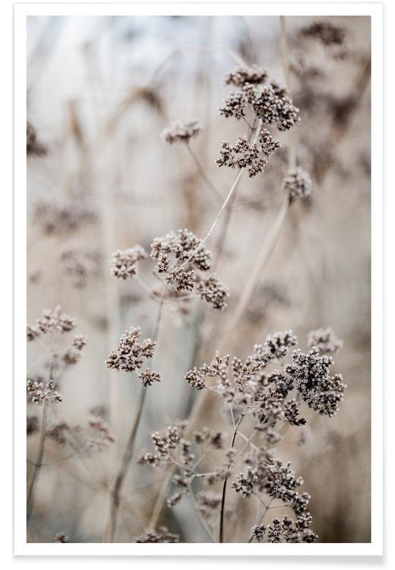 Feuilles & Plantes, Unknown 8 affiche
