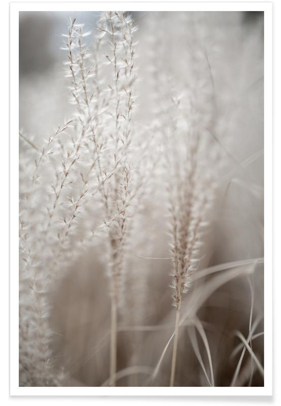 Feuilles & Plantes, Grass 18 affiche