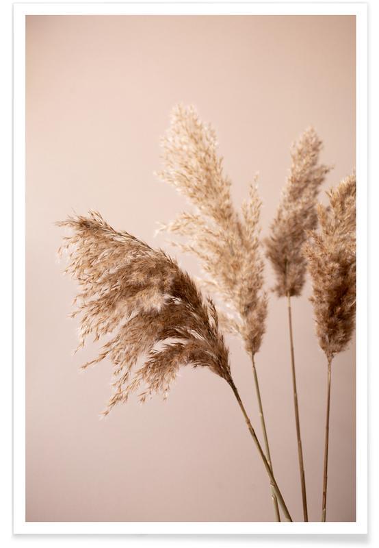 , Grass 24 poster