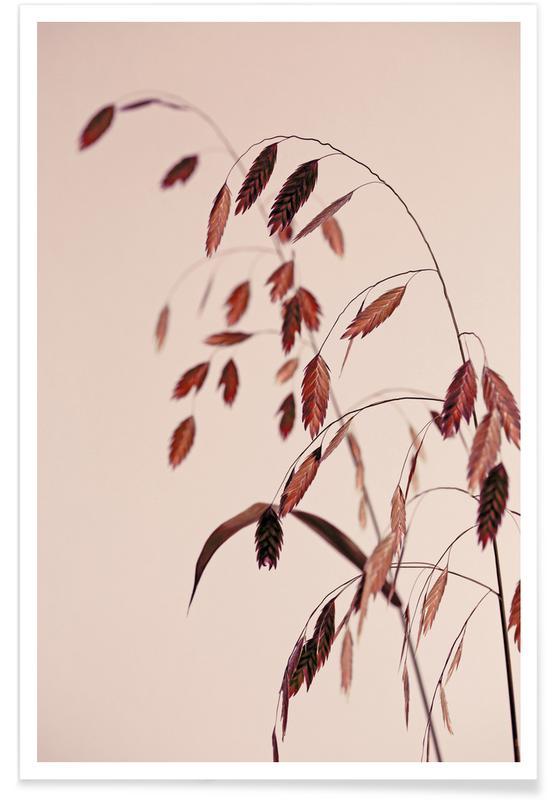 , Grass 21x -Poster